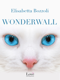 Wonderwall ePub