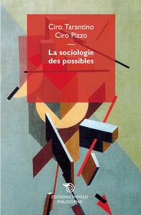 La sociologie des possibles ePub