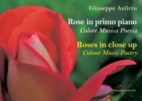 Rose in primo piano - Roses in close up