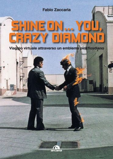 Shine on…you, crazy diamond ePub