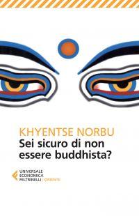 Sei sicuro di non essere buddhista? ePub