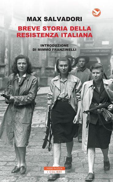 Breve storia della Resistenza Italiana ePub