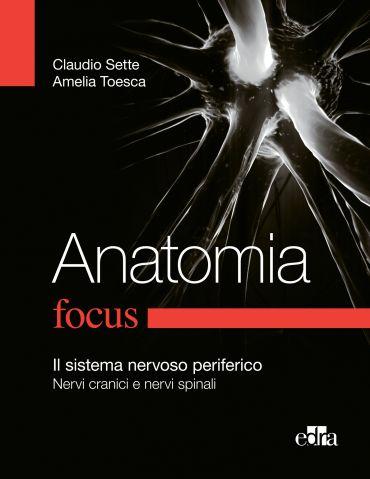 Anatomia Focus ePub
