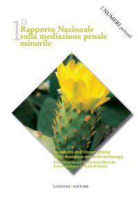 1° Rapporto nazionale sulla mediazione penale minorile