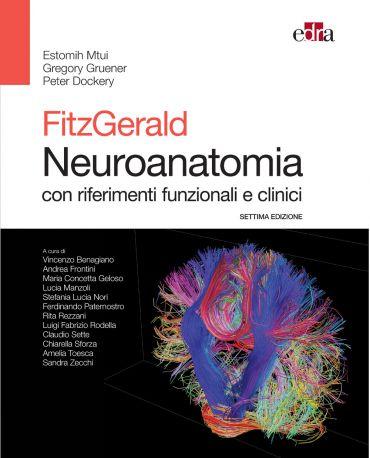 Fitzgerald Neuroanatomia ePub