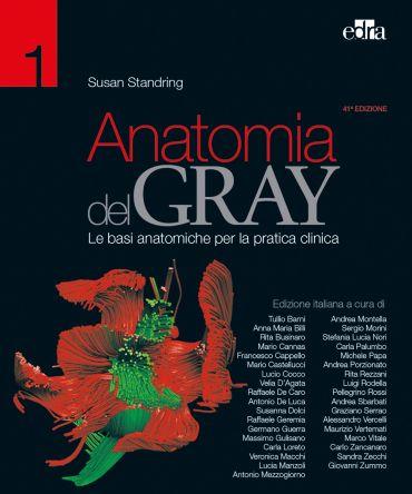 Anatomia del Gray 41 ed. ePub