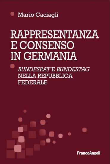 Rappresentanza e consenso in Germania ePub