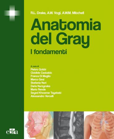 Anatomia del Gray ePub