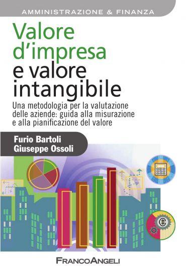 Valore d'impresa e valore intangibile. Una metodologia per la va