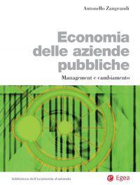 Economia delle aziende pubbliche ePub