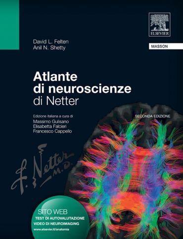 Atlante di neuroscienze di Netter ePub