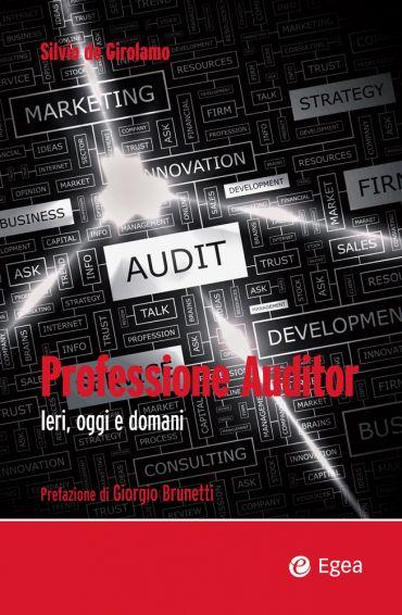 Professione Auditor ePub