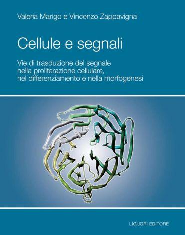Cellule e Segnali