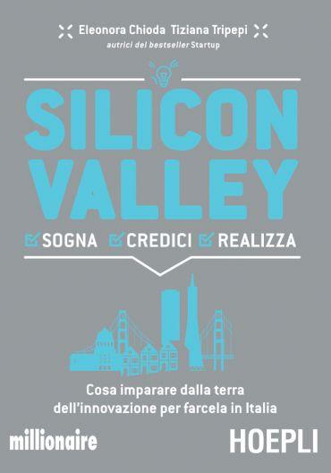 Silicon Valley ePub