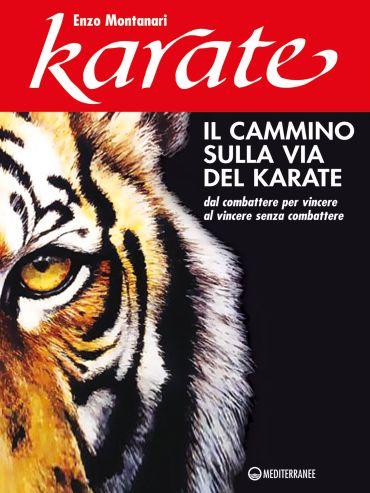 Il cammino sulla via del karate ePub