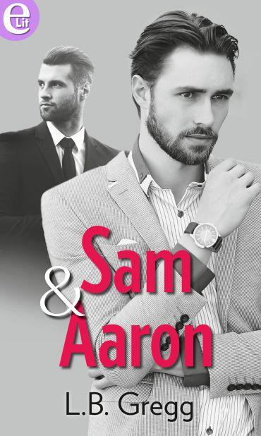 Sam and Aaron (eLit) ePub