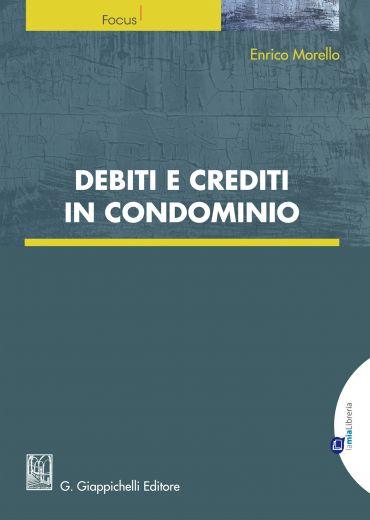 Debiti e crediti in Condominio ePub