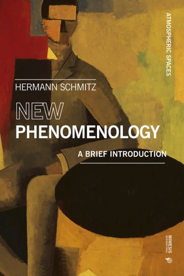 New Phenomenology ePub