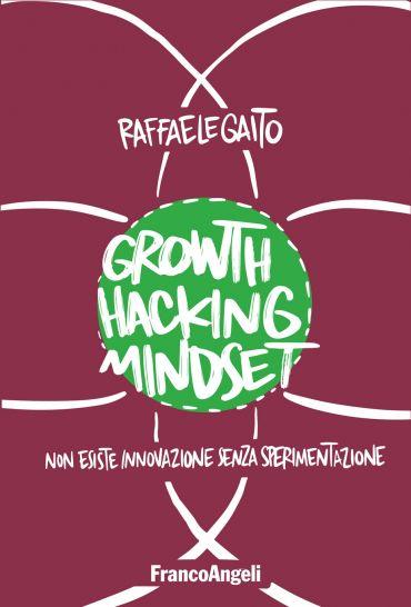Growth Hacking Mindset ePub